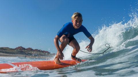 tavola da surf per principianti softboard