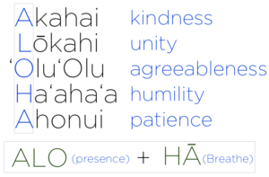 significato aloha hang loose