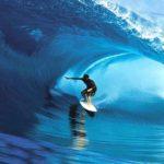 Tavola da surf Stewart  Steamroller