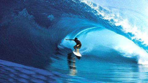 tavola da surf steamroller caratteristiche