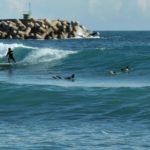 Surf in salento: spot e scuole migliori per principianti e professionisti